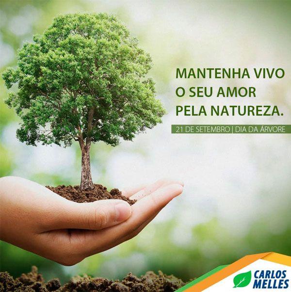 Preserve o meio ambiente